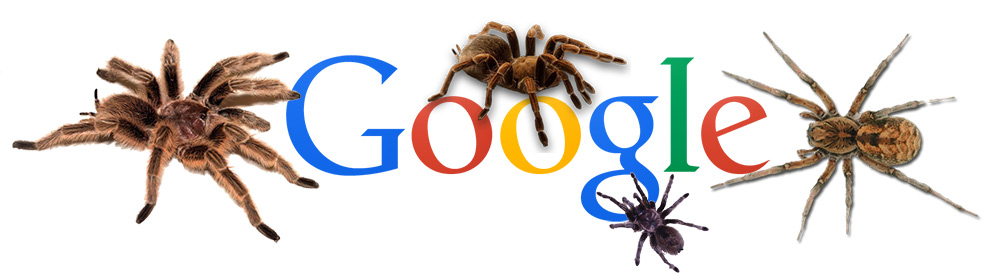 google-onpage-seo-montreal